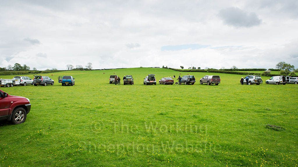 Vehicles spaced out in a row across a sheepdog trial field