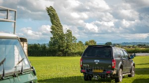 A tall poplar tree bends in the high wind at Evesham Sheepdog Trials