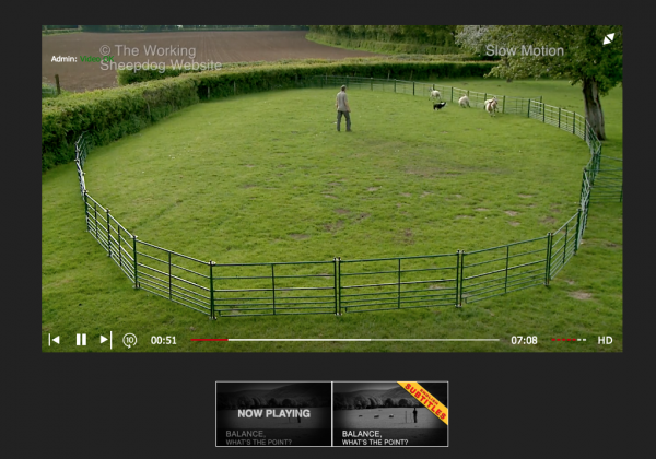 Photo showing the controls of our new player for the online sheepdog training tutorials