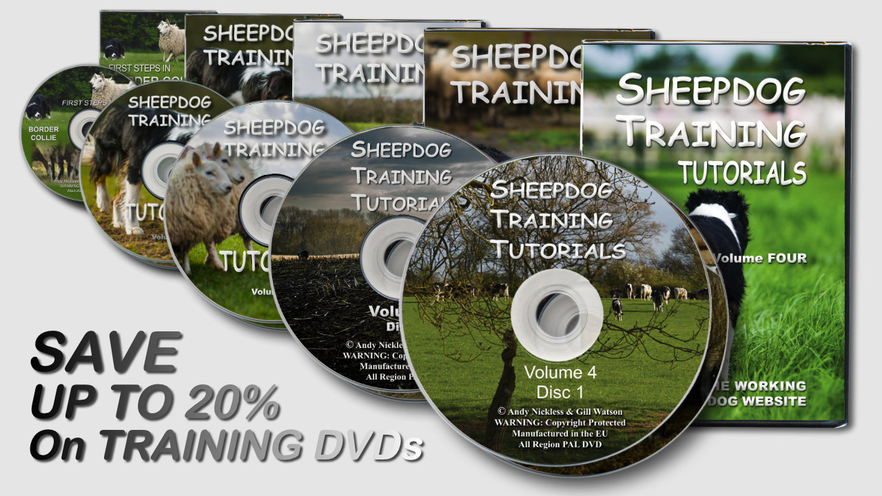 Sheepdog Training DVDs